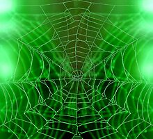 Browse the Web . . . by Tim Scullion