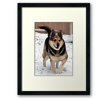 Grandpa's Best Friend Framed Print