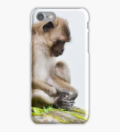 monkeys in the jungle iPhone Case/Skin