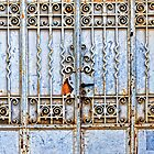Rusty gate by Silvia Ganora
