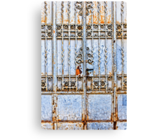 Rusty gate Canvas Print