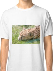 leopard at the zoo Classic T-Shirt