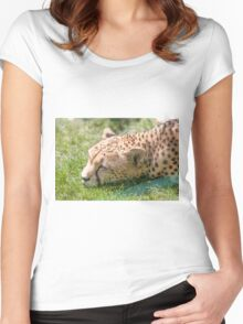 leopard at the zoo Women's Fitted Scoop T-Shirt