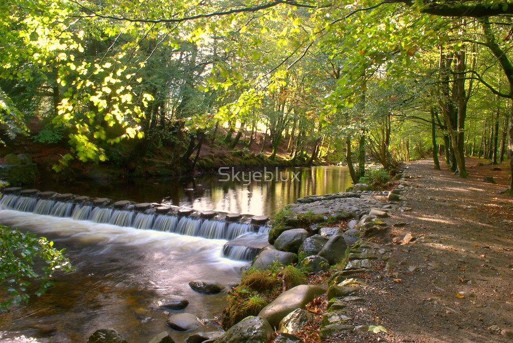 Tollymore Forest Park, Mournes by Skyeblux