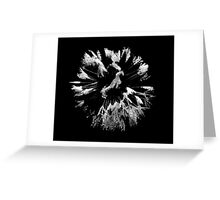 Dandelion in the dew Greeting Card