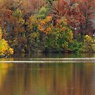 House by the Lake by Susan Blevins