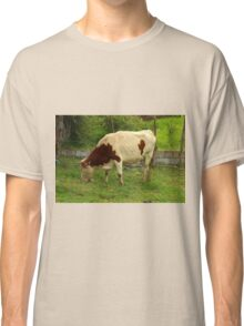 Brown and White Cow on a Farm Classic T-Shirt