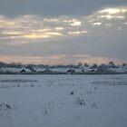 Snowy Lincolnshire Fields by Rachel Tyrrell