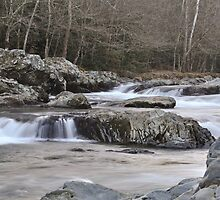 Greenbrier Mountain Stream by Ron Sentell