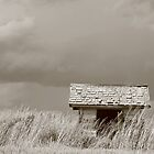 Little Outhouse on the Prairie by Rachel Sonnenschein