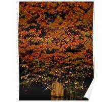 Autumnal Splendor ~ Part Two Poster