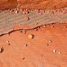 sedimentary by Naia