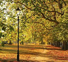 Autumn in the Common by Llewellyn Cass