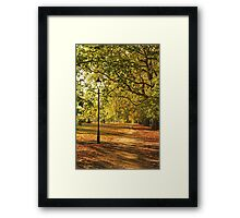 Autumn in the Common Framed Print