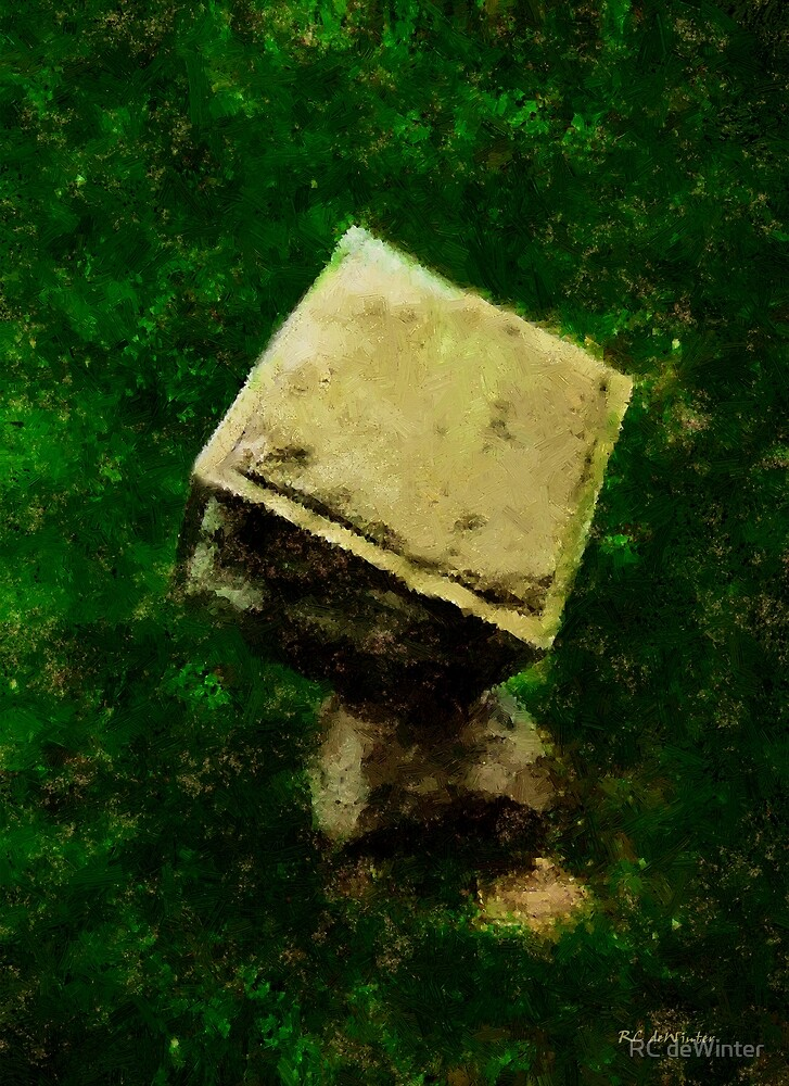 Life Carved in Stone by RC deWinter