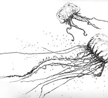 jellyfish by ildiko