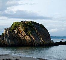 Goscar Rock Tenby Pembrokeshire by Steve Purnell