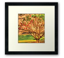 That's My Tree Framed Print