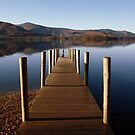 Jetty At Borrowdale by Deborah  Bowness