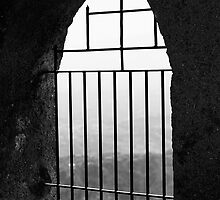 The window  by Peppedam