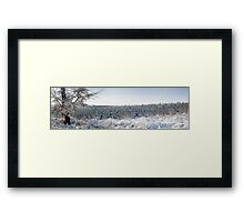 Winter Panorama Framed Print