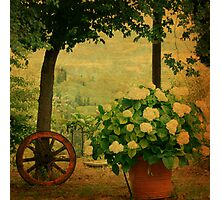 Springtime in Tuscany Photographic Print
