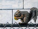 Squirrel Away  by LindaAppleArt