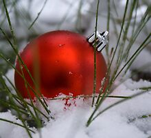 Red Ornament in Snow by crystalseye