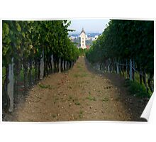 Vineyard & Church Poster