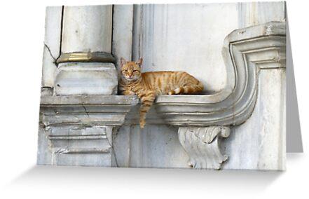 Relaxing on marble (Eyüp) by Marjolein Katsma