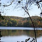 Radnor Lake, Nashville, TN autumn by eangelina64