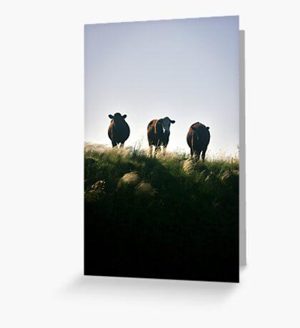 Three On A Hill Greeting Card