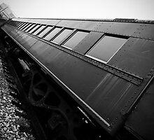 Down Train by Paul Sweany