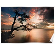 Indian River Sunset Poster