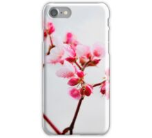 Why I love Spring No:2.... iPhone Case/Skin