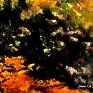 abstract zen garden by Sherri     Nicholas