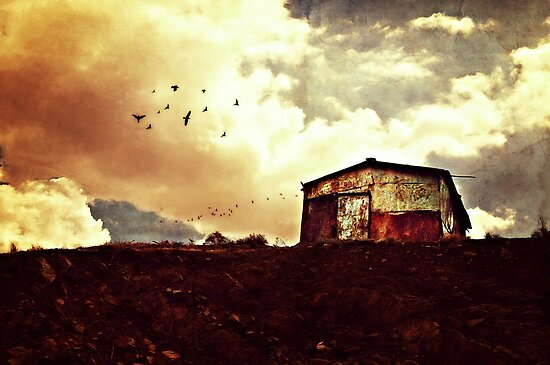Rusted by Katayoonphotos