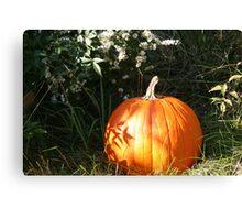 Season of Harvest 4 Canvas Print