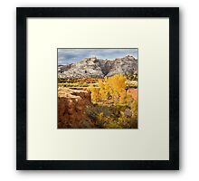 Autumn Cottonwoods at Split Mountain Framed Print