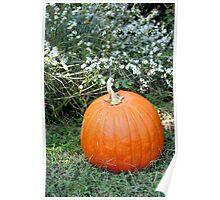 Season of Harvest 2 Poster