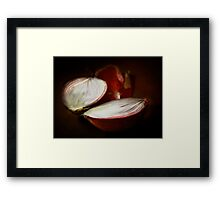 A Red Onion Framed Print