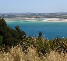 View from the top of the Nut, Stanley, Tasmania 2011 by John Ivor Coombes