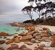 Binalong Bay, Tasmania, Australia by Kristi Robertson