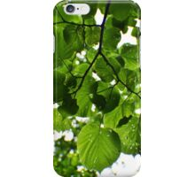 Bright Green Leaves and Branches  iPhone Case/Skin