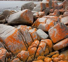 The beautiful rocks edging Binalong Bay, Tasmania, Australia by Kristi Robertson
