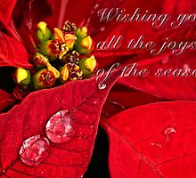 Sparkling poinsettias - card by Celeste Mookherjee