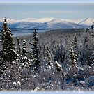 White Mountains - Interior Alaska  by Melissa Seaback