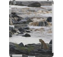 Leopard at the River iPad Case/Skin