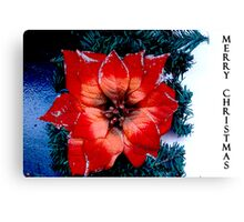 a flower for Christmas  Canvas Print