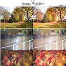 General Workflow Lightroom Preset - Deluxe Pack of 12! by Lady-Tori